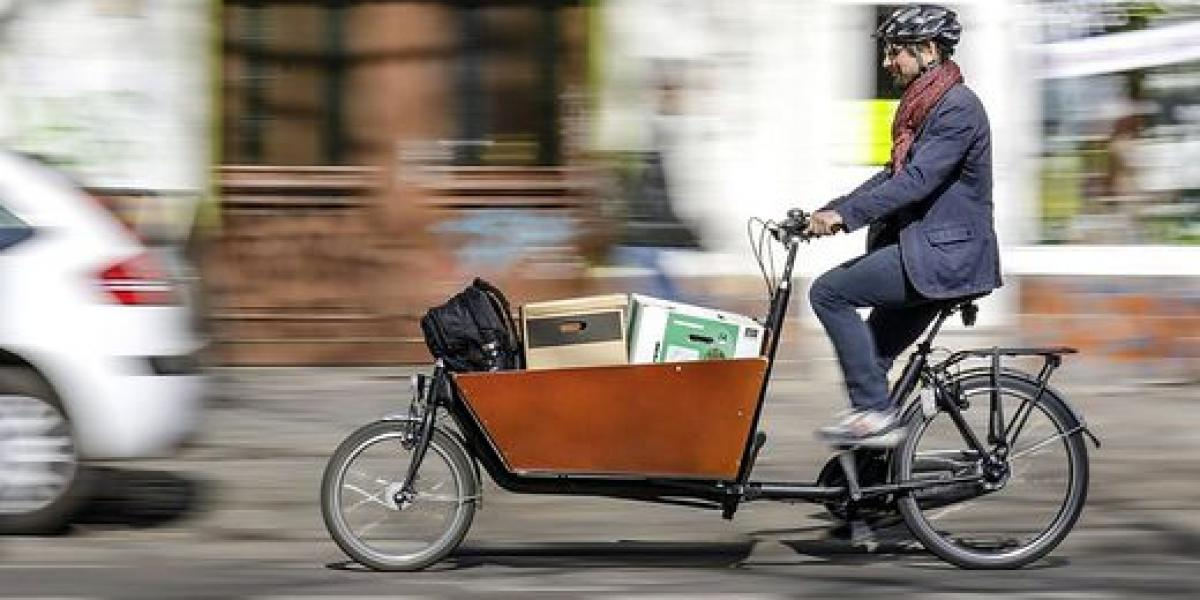 Man on cargo bike (Source:Kleine Zeitung)