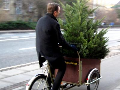 A man riding a cargo bike with a cristmas tree in the front box